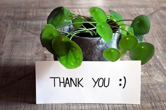 bedankt - dankwoord - thank you